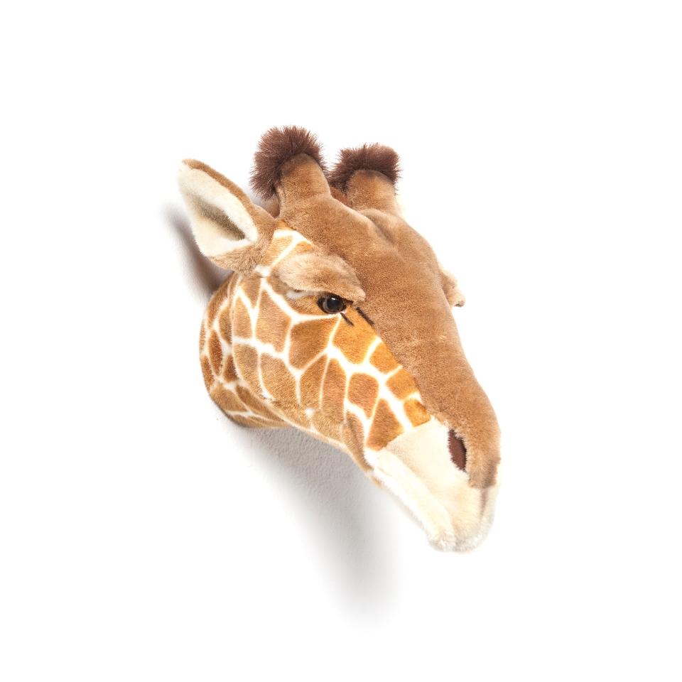 <p><strong>NOVINKA</strong></p> <p></p> <p><strong>Žirafa Ruby</strong></p> <p>Jsem vysoká a štíhlá.</p> <p>Můj dlouhý krk mi dovolí si všechno z výšky prohlédnout. Proto vím, co se kde děje. A pokud někdo potřebuje pomoci, může se na mne spolehnout.</p> <p></p> <p></p> <p></p> <p><strong><br /></strong></p>