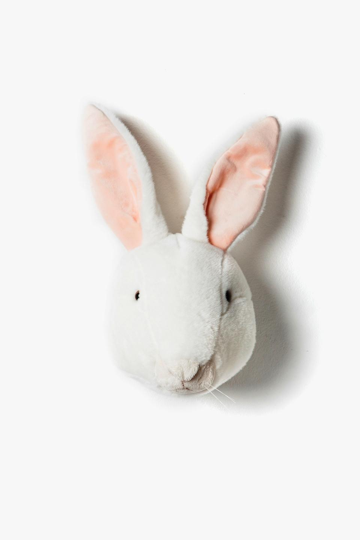 <p><strong>Alice</strong></p> <p>Ňuf - ňuf, já jsem králice Alice!</p> <p>Roztomilá, hebounká a tak trochu kouzelná. Mám úžasné uši, které slyší všechno.</p> <p>A můj bystrý čumáček vyčuchá každičkou dobrotu - hlavně mrkvičku, tu mlsám nejraději.</p> <p></p> <p>My králíčci jsme neposední - rádi tancujeme, skáčeme a hopsáme.</p> <p>Pojď, budeme si hrát společně!</p> <p></p> <p></p> <p></p> <p></p> <p></p>
